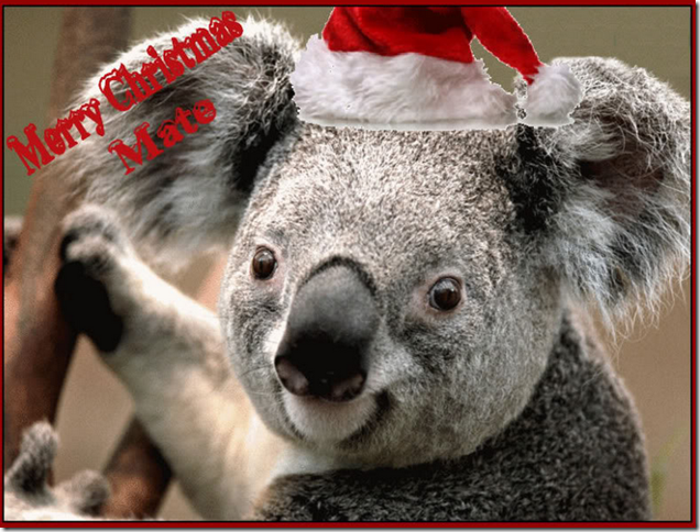 Koala saying 'Merry Christmas Mate'