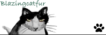 Thumbnail header from Blazing Cat Fur blog