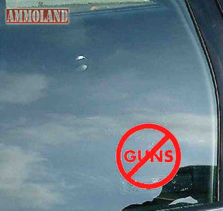 Bogus No Guns Sign