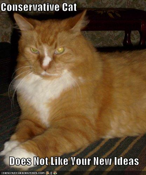 Orange cat captioned with 'Conservative Cat Does Not Like Your New Ideas'