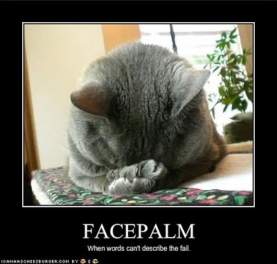 Feline Facepalm (or perhaps facepaws): When words can't describe the FAIL