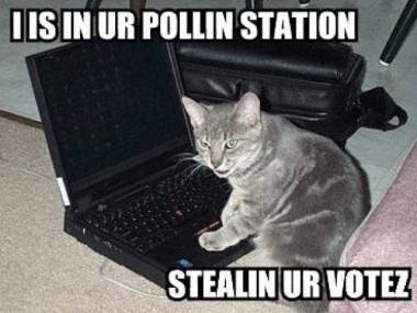 Lolcat with laptop: I is in ur pollin station stealin ur votez