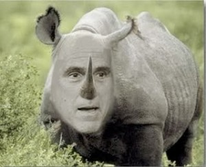 Mitt Romney, the RINO
