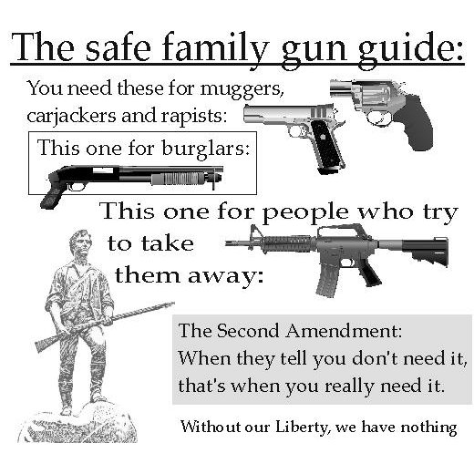 The safe family gun guide