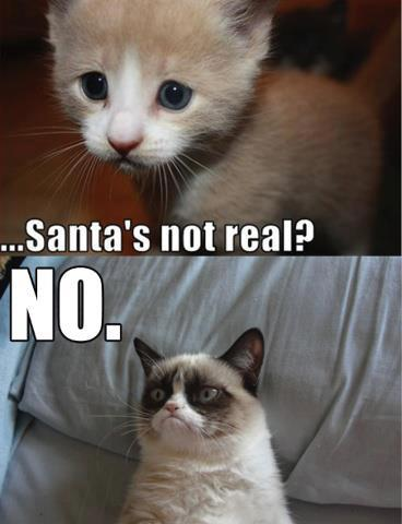 Kitten: Santa's not real? Cat: NO.