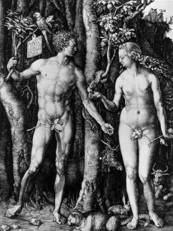 Adam and Eve by Albrecht Dürer