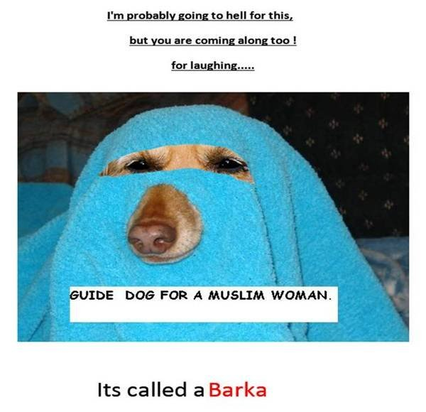 Veiled guide dog for a Muslim woman: It's called a Barka