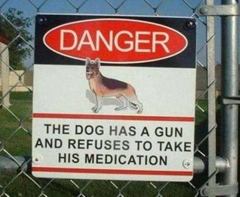 Danger: This dog has a gun and refuses to take his medication