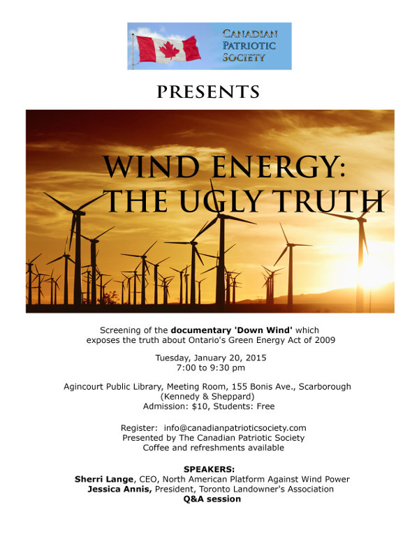 Wind energy: The ugly truth