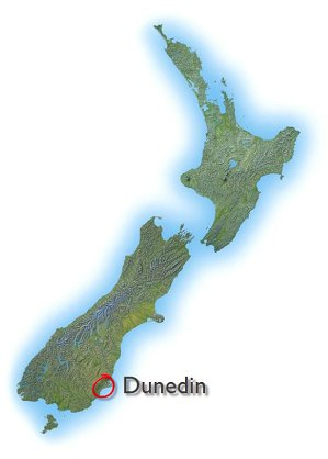 dunedin muslim Careers careers working at bdo is all about richer relationships – within our network, with our clients and around the world consider us when you make your.