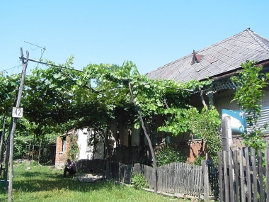 Farm house in Andreevka, Ukraine, where my grandfather emigrated from.