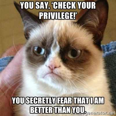 Grumpy Cat responds to 'Check your privilege!'