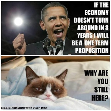 Grumpy Cat v. Obama 1