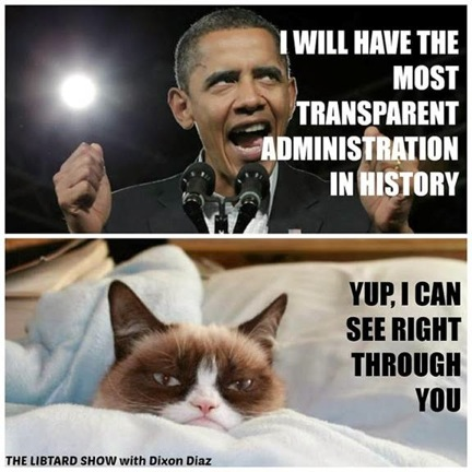 Grumpy Cat v. Obama 2