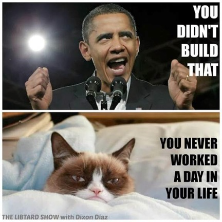 Grumpy Cat v. Obama 3
