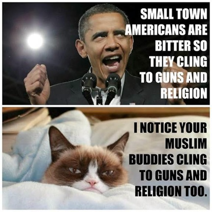 Grumpy Cat v. Obama 4