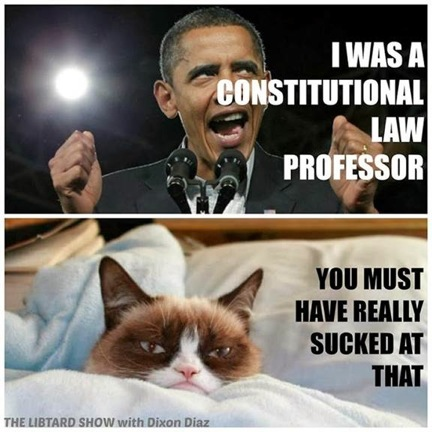 Grumpy Cat v. Obama 6