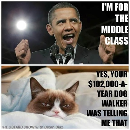 Grumpy Cat v. Obama 8