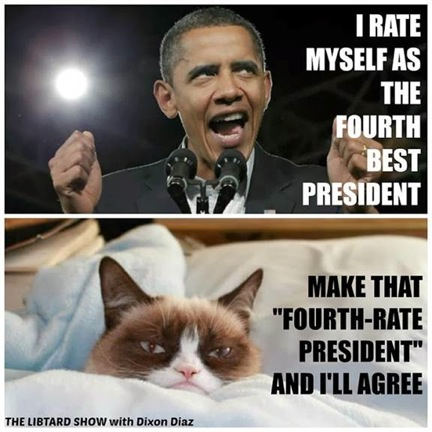 Grumpy Cat v. Obama 9