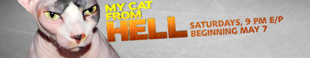 My Cat From Hell on Animal Planet Beginning May 7, 2011 Saturdays 9pm E/P