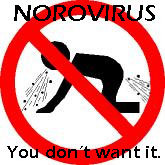Norovirus: You don't want it