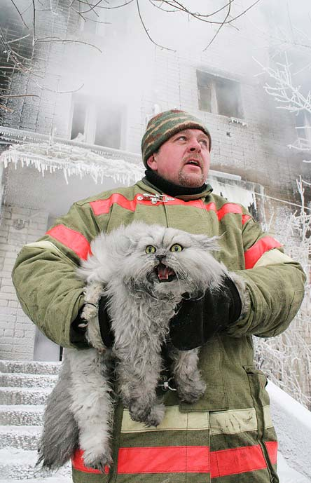 Firefighter carrying a rescued cat