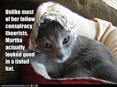 #Caturday - What do you believe? — 1389 Blog - Counterjihad!