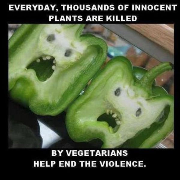 Every day, thousands of innocent plants are killed by vegetarians. Help end the violence.