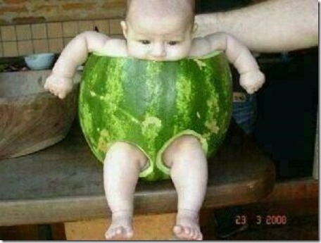 Watermelon rind carved as infant breeches