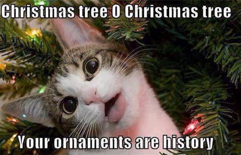 Cat: Christmas tree O Christmas tree, Your ornaments are history!